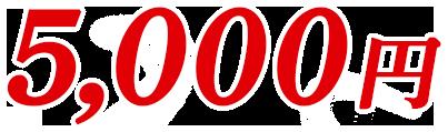 5,000円(税別)
